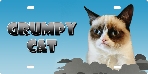 Grumpy Cat License Plate License Plate, Grumpy Cat License Plate License Tag