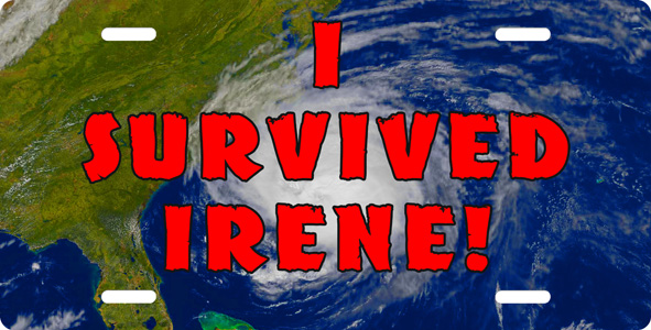 I survived irene License Plate, I survived irene License Tag